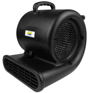 Carpet Air Mover